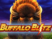Новый гаминатор в зале Вулкан Buffalo Blitz