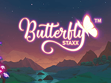 Аппарат Butterfly Staxx